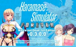 Haramase Simulator