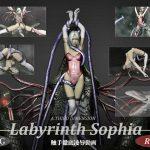 Labyrinth Sophia